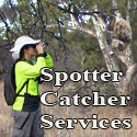 Spotter Catcher add
